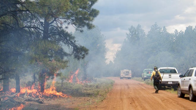 Crews manage a fire in the Kaibab National Forest on Wednesday.