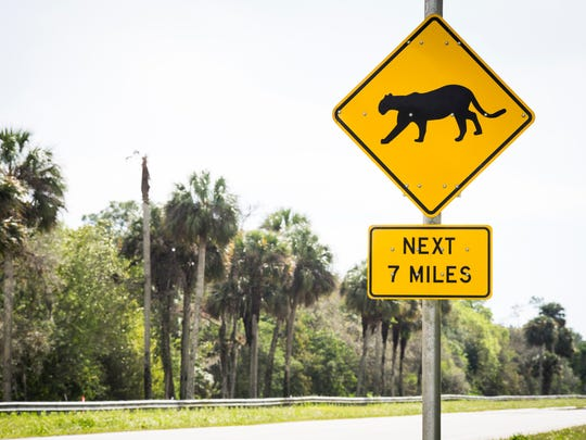 Florida panther sign near Immokalee, Florida.