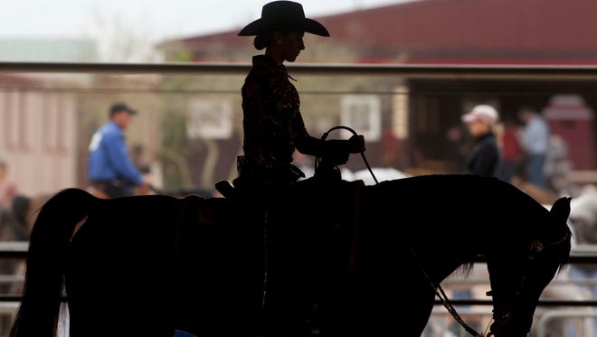 The Arabian Horse Association of Arizona will pitch in $240,000 a year for 20 years toward an expansion project at Scottsdale's WestWorld.