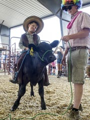 Dawson Dory dressed as a cowboy rode his calf during the Bucket Calf costume parade during the Warren County Fair.