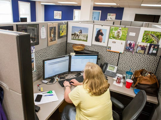 Shari Young, a systems support engineer, works at her