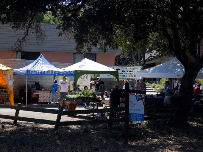Farm Day, Corral de Tierra Grange, Saturday, Aug.13,