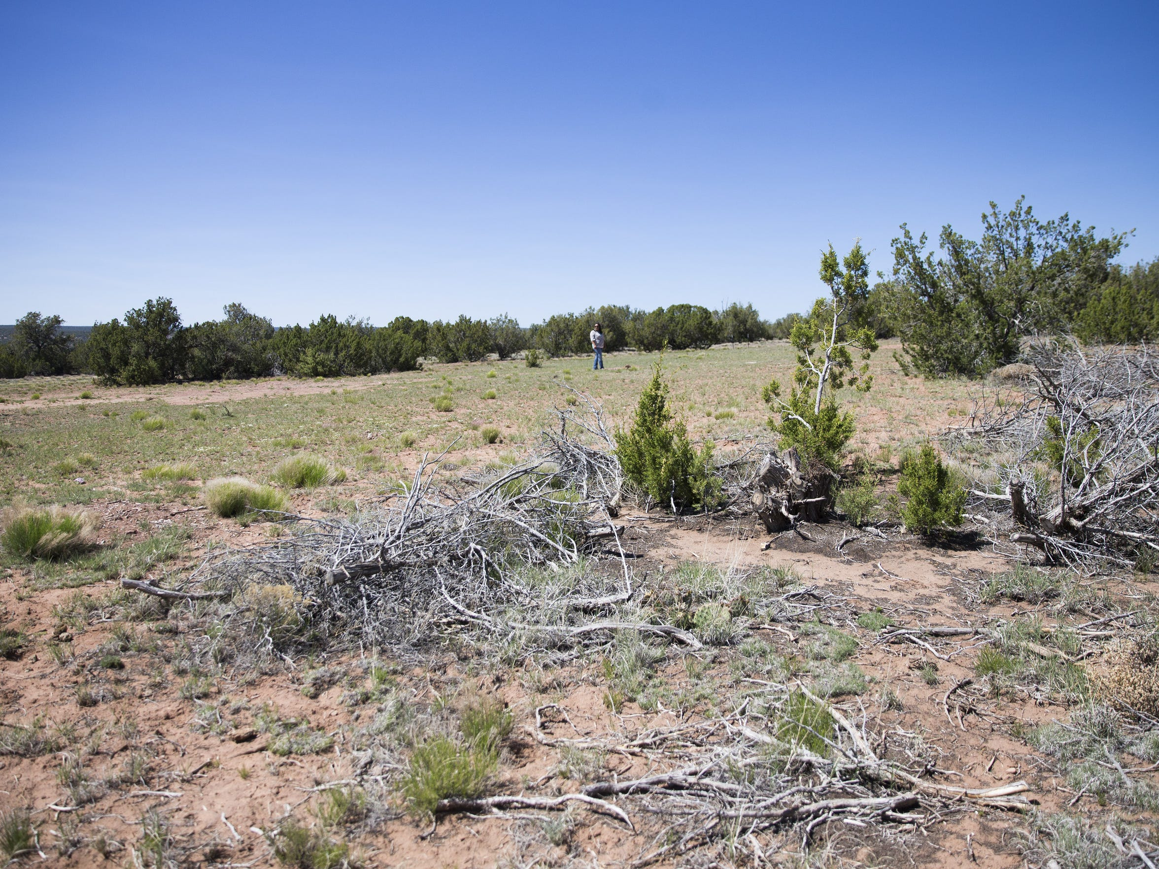 Though the Navajo Housing Authority held a ribbon-cutting ceremony in 2014, construction has not yet begun on the Bluestone Development near Houck, Ariz.