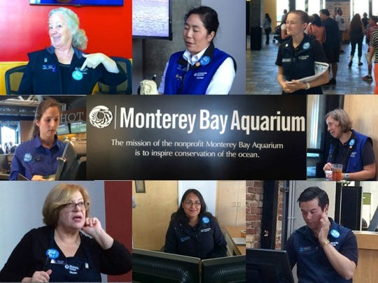 Aquarium staff and volunteers wear blue buttons showing