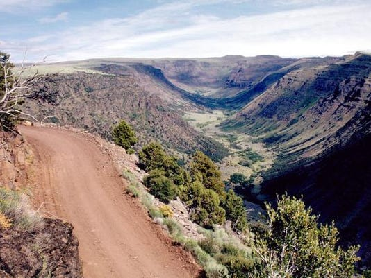Steens Mountain Loop Road looks down into Big Indian Gorge.