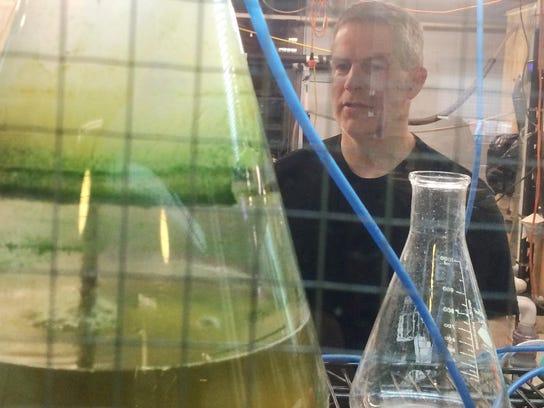 Cyanobacteria watch: Jason Stockwell, director of UVM's