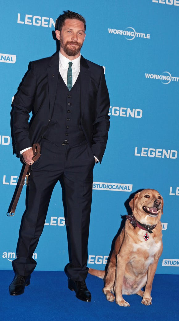 Tom Hardy brought Woodstock to the 2015 London premiere