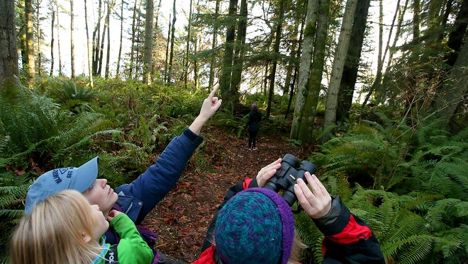 Cara Scheffer points out a bird to her daughter during a birding hike at the Port Gamble Forest Heritage Park.