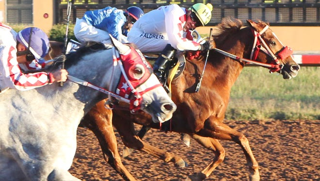 Jockey Hector Aldrete gives a look at his rivals as he and Cinco Menudos cross the wire in front, winning the $17,000 New Mexico Classic Cup Quarter Horse Championship at Zia Park in Hobbs.