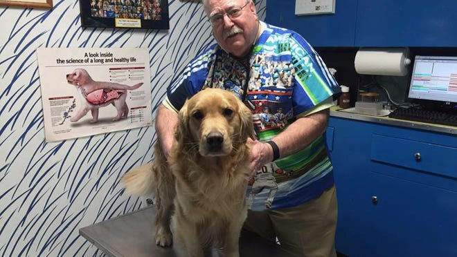 Dr. Michael Lappin, 66, examines his golden retriever, Isaac, at The Animal House, Lappin's office in Buzzards Bay, Mass. When Lappin graduated from Michigan State, the average golden retriever was living 16 or 17 years. Today, he says that's down to 9 or 10.