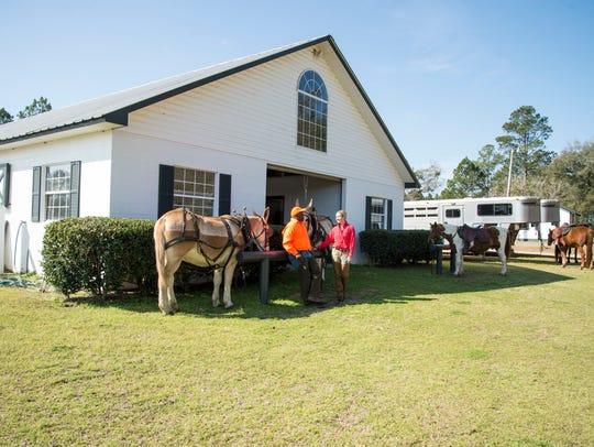 The Winn Dixie Plantation.