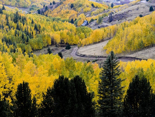colorado fall colors guide where and when to go