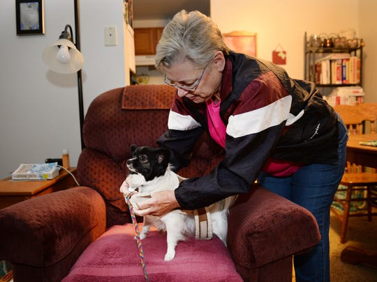 Ann Green bundles up her papillon Bella for a walk on Tuesday, November 22, 2016. Green gets help with her housing through a housing voucher from Housing Catalyst but otherwise lives on $1,300 a month Social Security disability payments.