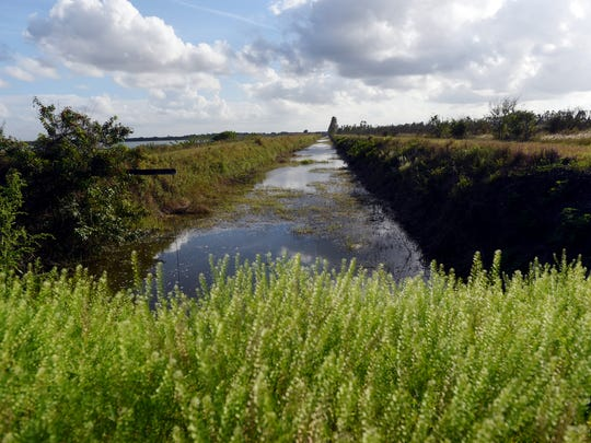 Port St. Lucie city officials are looking to build seven reservoirs on land recently added to the McCarty Ranch Preserve that will remove nearly 9 billion gallons of polluted water from the C-23 Canal that would normally run into the St. Lucie River and Indian River Lagoon.