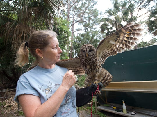 The Treasure Coast Wildlife Center's open house will be 11 a.m. to 4 p.m. Saturday in Palm City.