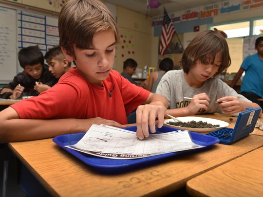 Daniel Gaston (left) and Gregory Lareva, fifth-graders at Campus Canyon School in Moorpark, dissect an owl dropping during a weekly enrichment hour.