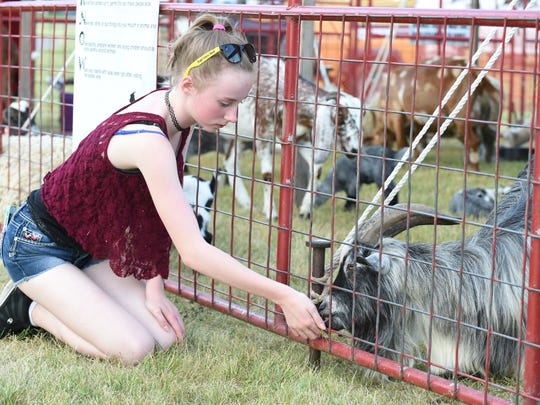 Elly Thompson of Westland feeds one of the Pygmy goats at the petting zoo at the Canton Liberty Fest. The festival opened  Thursday evening in Heritage Park.