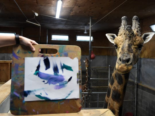 Jumbe the giraffe stands next to his completed artwork