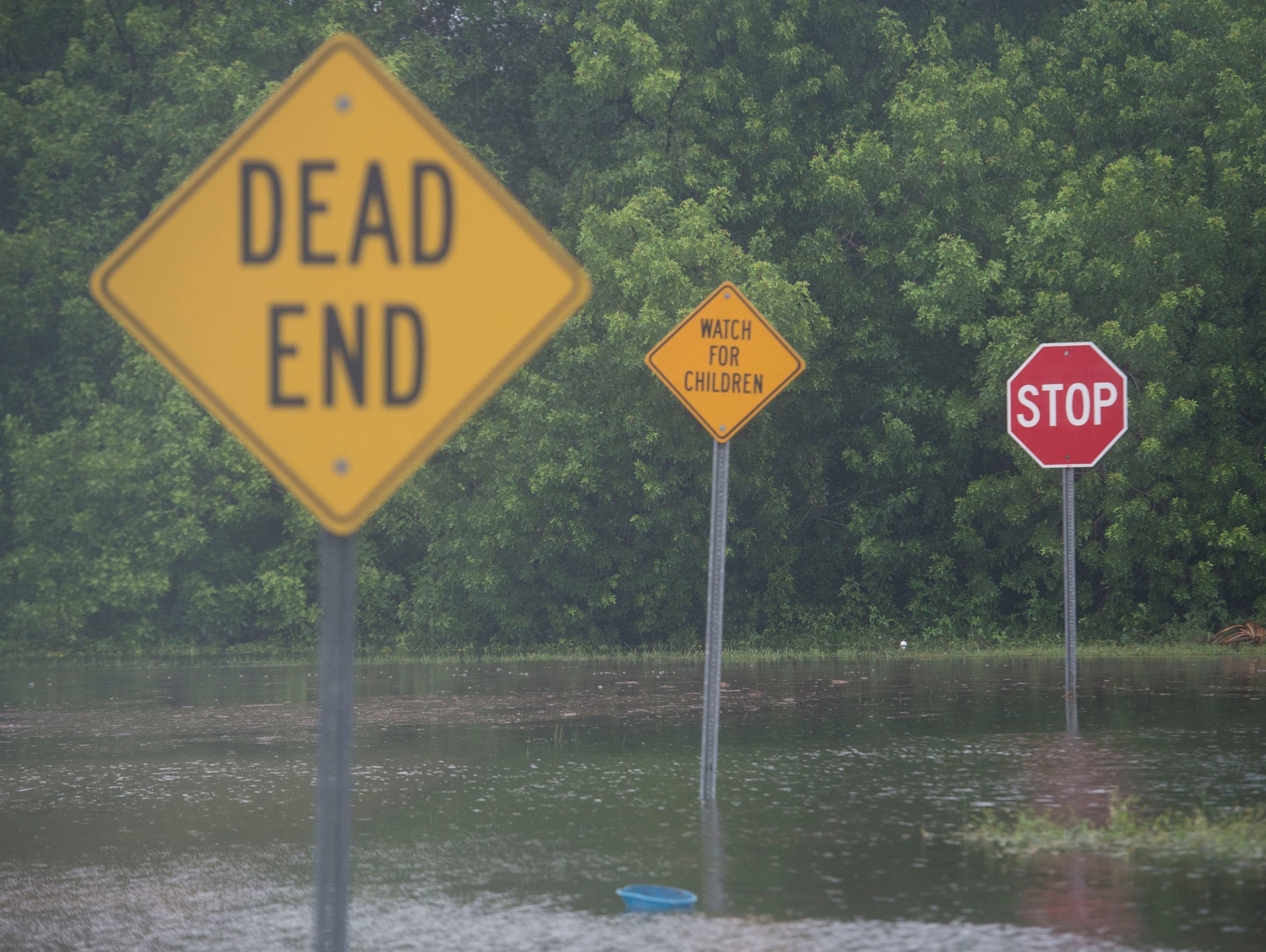 Roads are flooded near Sunrise Boulevard and Maravilla