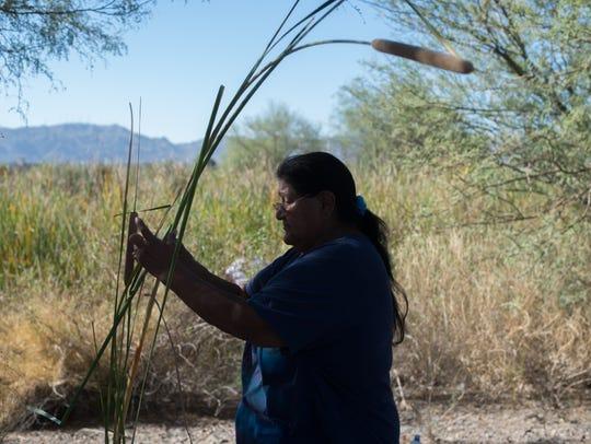 Yolanda Elias cleans reeds in Phoenix on Sept. 16,