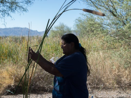 Yolanda Elias cleans reeds in Phoenix on Sept. 16, 2017. She's been harvesting reeds since she was 13, she says.