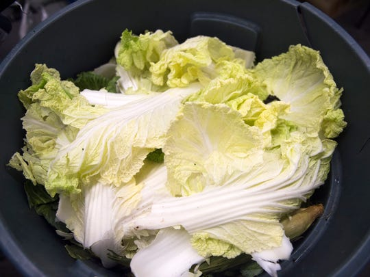 Lettuce sits in a bin waiting to be composted at the