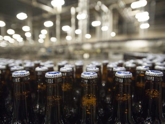 Bottles of Bud Light beer move down the bottling line
