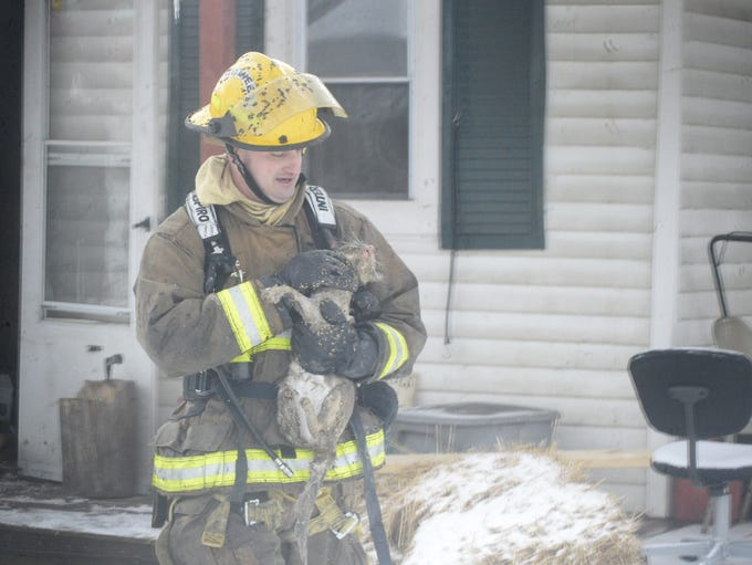 Doug Dillman carries a cat from Wednesday's house fire