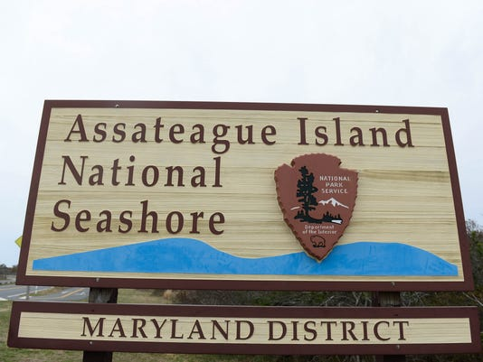 636601741134663075-20180424-MR-Assateague-15.jpg