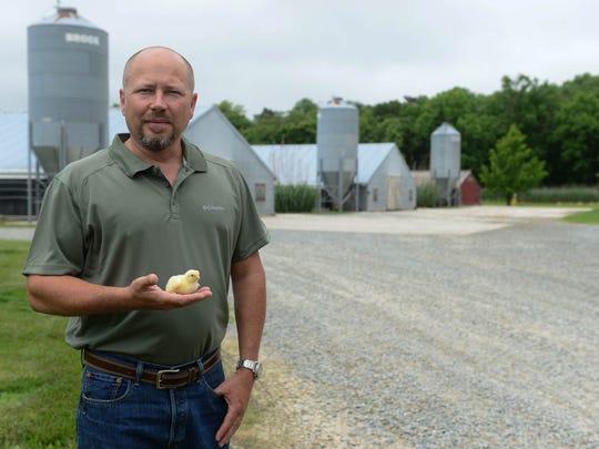 Millsboro farmer Terry Baker, holds one of his chicks