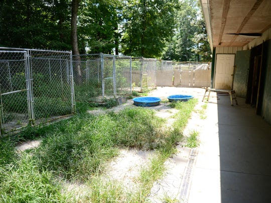Linda Brown shows her outdoor dog kennels and property