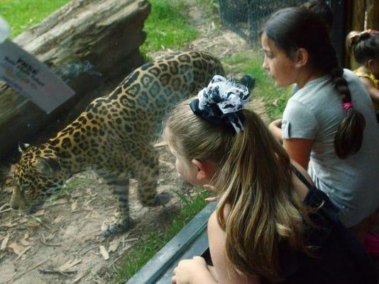 -ANI Zoo1.JPG_20140712.jpg