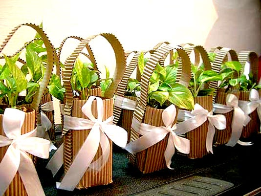 Flower or herb pots as favors.
