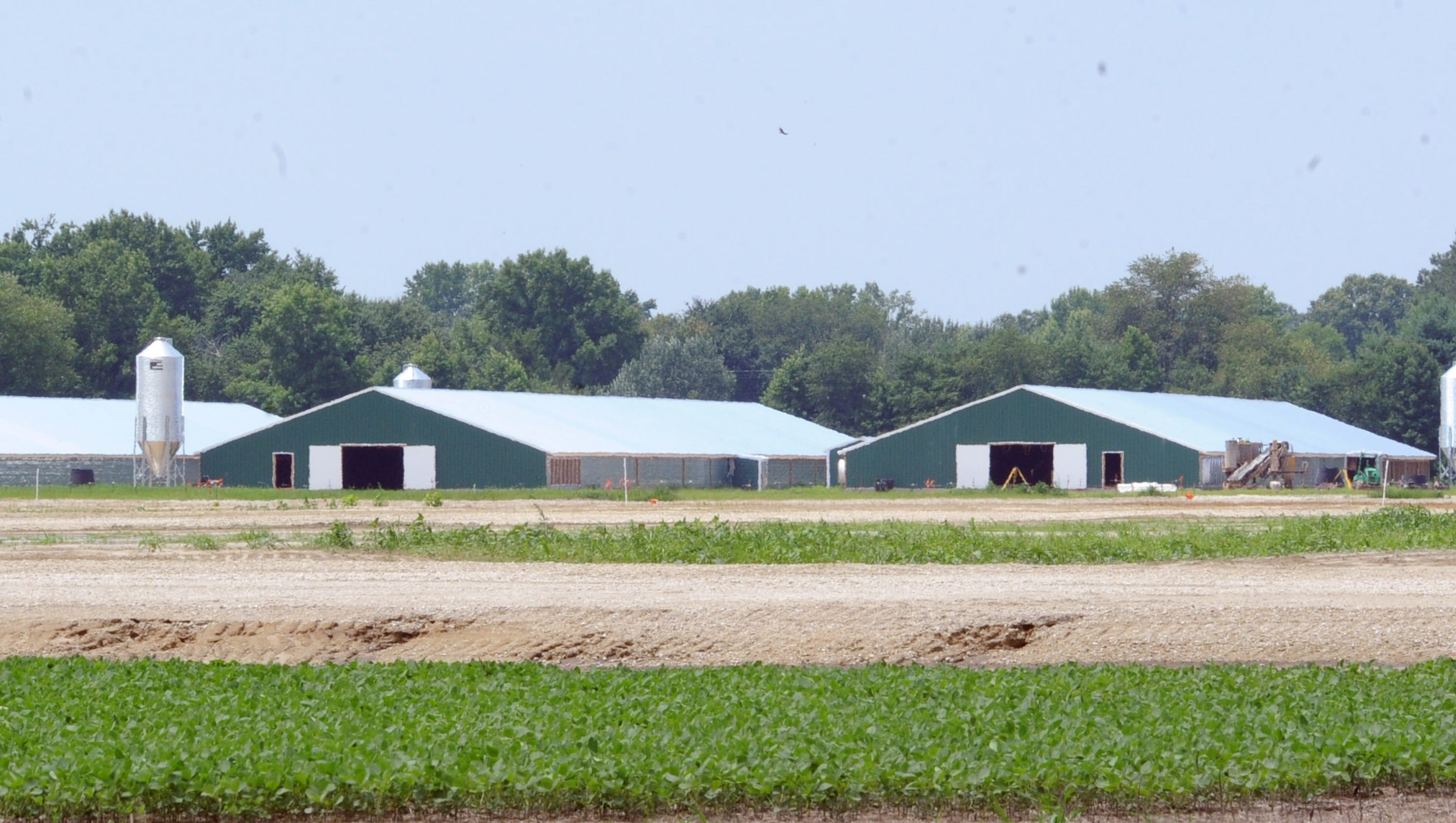 Building Commercial Poultry Houses
