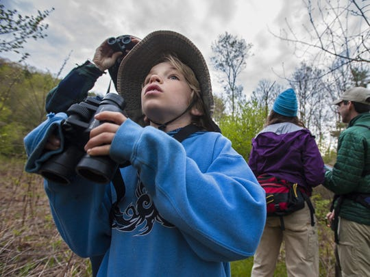 Isaac Wood-Lewis, 9 of Burlington, participates in Audubon Vermont's annual Birdathon at the Green Mountain Audubon Center in Huntington on Thursday.