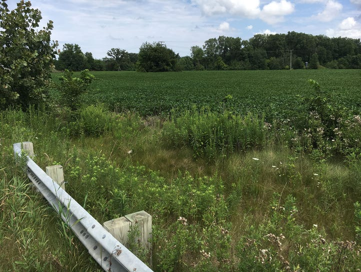 Lyon Township is planning 11 Mile Park on the north
