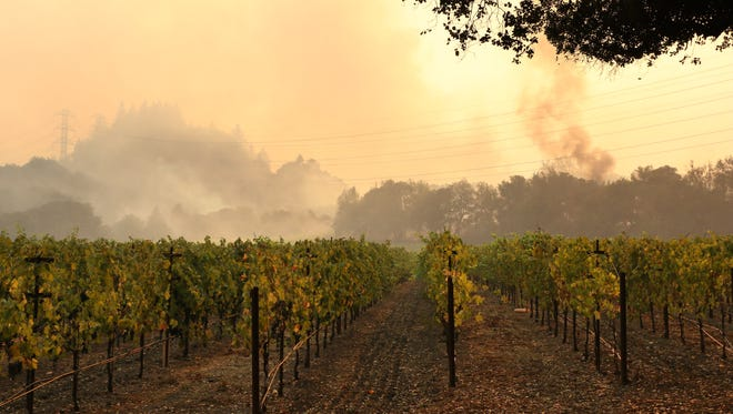 A fire threatens a vineyard along Bennett Valley Road east of Santa Rosa, Calif. on Oct. 11, 2017. Photo: Jason Bean/RGJ file