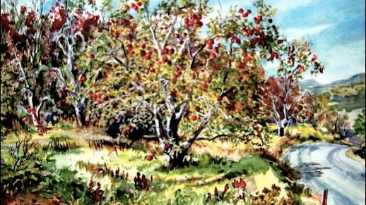 """Kauffman's Brookhill Orchards, Springettsbury Township, York County, Pa. (14"""" x 18"""" Watercolor created in 1964 by Cliff Satterthwaite)"""