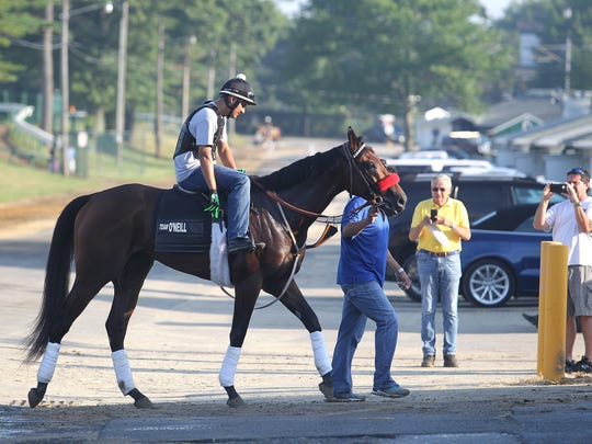 Kentucky Derby winner Nyquist with exercise rider Jonny Garcia aboard, makes his way off the track after jogging at Monmouth Park on Thursday morning.