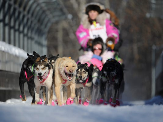 636242557841207316-Iditarod-Sled-Dog-Rac-Robe-2-.jpg