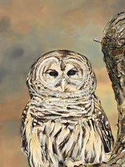 Barred owl is one of 25 watercolors on display in an