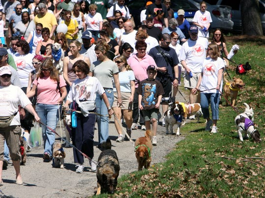 Bring your canine companion to  SPCA's annual Dog Walk & Pet Fair at FDR State Park in Yorktown Heights.
