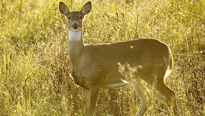 November 1 was the most imortant day for Mississippi deer hunters this year.