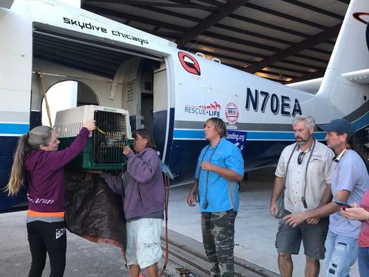 636451701095377918-H.A.L.O.-volunteers-unloading-the-plane.JPG