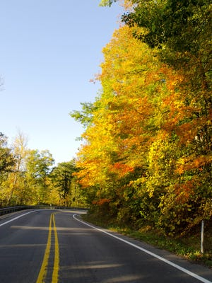 The sun shines on fall colors along M-136 in Clyde Township.