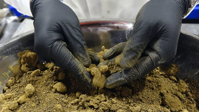 A worker crumbles dry hash to add to edible marijuana products at Kiva Confections in Oakland, Calif.