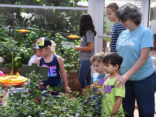 Children participating in the Discover STEAM Camp at River Bend Nature Center tour the butterfly conservatory Monday. Campers learn about Science, Technology, Engineering, Art and Math in the world around them.
