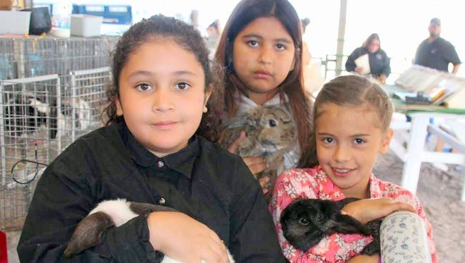 From left, are Bella Silva and her rabbit Emma, Gabriella Martinez and her rabbit Butterscotch and Alli Martinez and her rabbit Oreo. The trio participated in events at the Grant County Fair over the weekend.