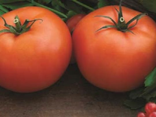 A Farmers Market Nutrition Class will be held at 2 p.m. on Friday, Aug. 3, at the Franklin Township Public Library in the Somerset section of Franklin Township.