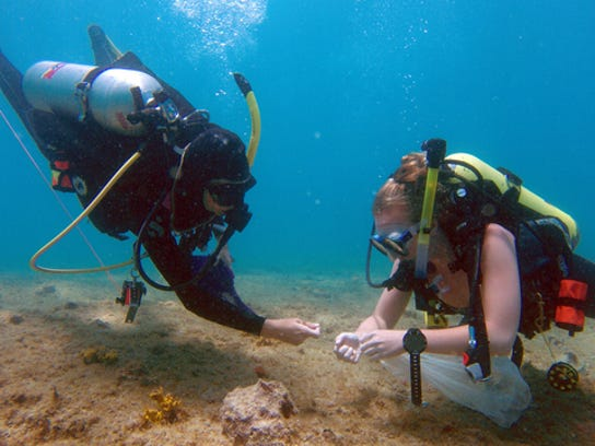 Researchers at Florida Atlantic University's Harbor